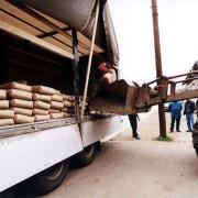 28 de tone de ciment pentru sinistraţi