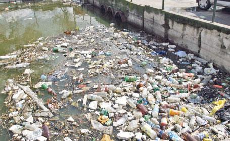 15 tone de gunoaie strânse de pe malurile pârâurilor Cuiejdi şi Potocina