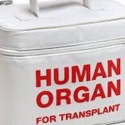 Dan Constatin vrea prelevare de organe în Spitalul Judeţean
