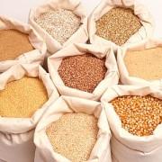 Evaziune fiscală din cereale