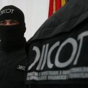 """Descinderi DIICOT Neamţ la o importantă firmă de pază: S.C. """"Scorseze Security Internationa"""