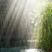 Neamţ: se anunţă ploi şi descărcări electrice