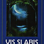 Vis şi Abis, cel de al 20-lea volum al poetului Mihai Merticaru