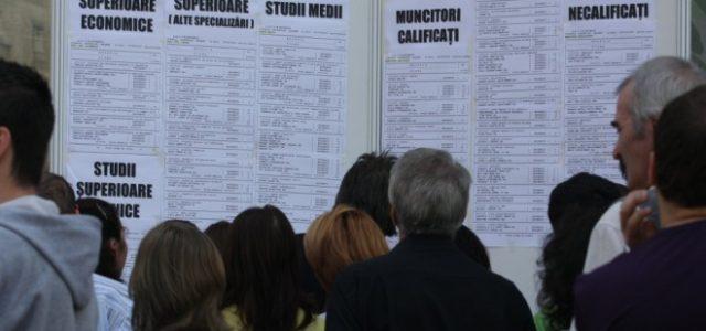 Neamţ: peste 400 de locuri de muncă