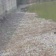 Hidroelectrica, în război cu Prefectura şi Garda de Mediu Neamţ pe gunoaiele lacului Bicaz: Cauza de fond rămâne nerezolvată!