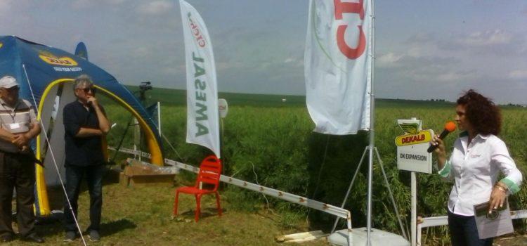 CICh, Monsanto şi Bussines Agro Consulting, excelenţă în agricultură la Ziua Rapiţei, comuna Dochia, judeţul Neamţ