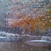 Avertisment meteo Neamţ: vreme urâtă şi frig până duminică după amiază