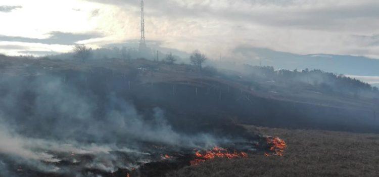 Incendiu periculos pe Pietricica. Vântul propagă cu repeziciune flăcările