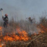 Incendii de sezon: cum să scapi de buruieni dându-le foc