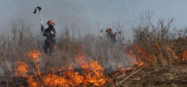 Foc necontrolat la vegetaţia uscată. Pompierii au avut ieri trei intervenţii
