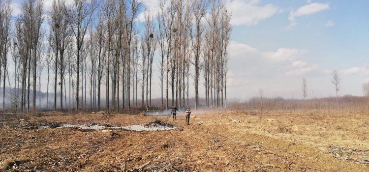 Mesaj de la pompierii nemţeni: STOP INCENDIILOR DE VEGETAŢIE! 22 de incendii în două zile
