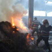 Pângăraţi: explozie urmată de incendiu la o fabrică de rumeguş