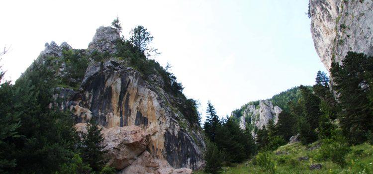 Alpinist prăbuşit în Cheile Şugăului
