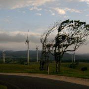 Neamţ: Marţi, cod galben de vânt puternic