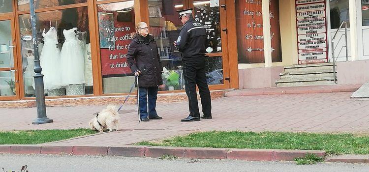 Vedeţi cum plimbaţi câinii în Piatra Neamţ!