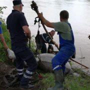 Neamţ: Cai salvaţi de pompieri în urma unui atelaj prăbuşit în Bistriţa