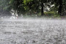 Neamţ: Cod Galben de furtuni