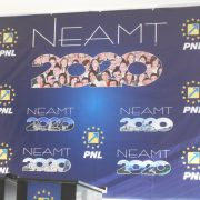 Conduceri demise în PNL Neamţ