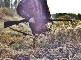Neamţ: Sute de prepeliţe împuşcate de italieni în Gîrcina! Localnic reţinut pentru deţinere ilegală de arme