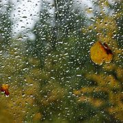 Neamţ: ploi şi temperaturi în scădere