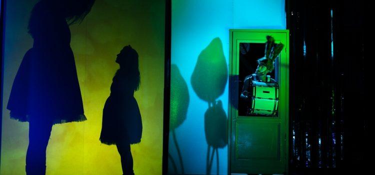 Piatra Neamţ: Programul Teatrului Tineretului în perioada 28-30 noiembrie 2019