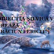 Direcţia Silvică Neamţ vă urează Crăciun fericit!