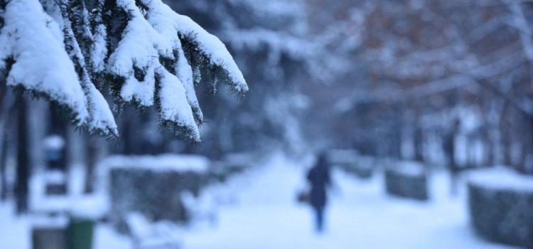 Neamţ: Informare de frig şi ninsori