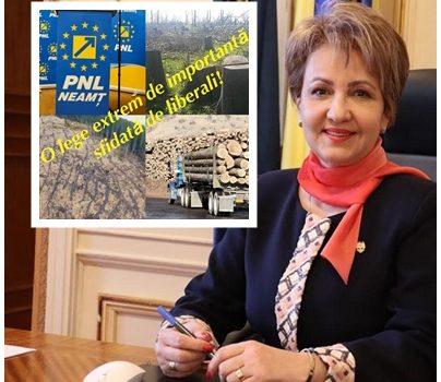 Senatoarea Emilia Arcan: PSD a spus DA pentru stoparea mafiei pădurilor!