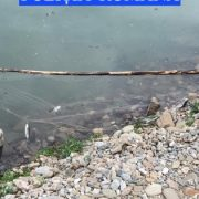 Neamţ: pescari care nu s-au bucurat de pradă; braconaj pe Lacul Bicaz
