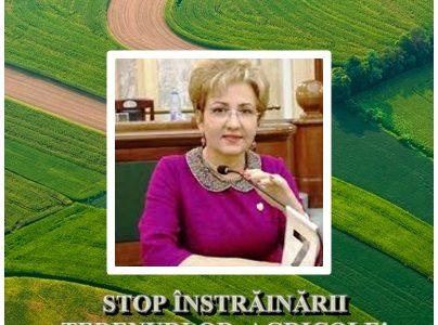 Românii au întâietate la achiziţia terenurilor agricole!