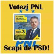 Nu-ți irosi votul! Votezi PNL, scapi de PSD!