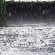 Jumătate din judeţul Neamţ, sub cod galben de ploi