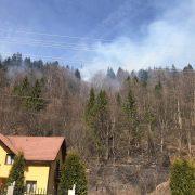 Vinovatul pentru incendiul uriaş de la Izvorul Muntelui va plăti! 56 de oameni au luptat 6 ore cu flăcările