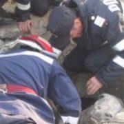 Viţel căzut într-o groapă, salvat de pompieri