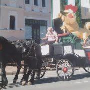 Lupu şi Cocoşul de Aur, în plimbare pe străzile din Piatra Neamţ