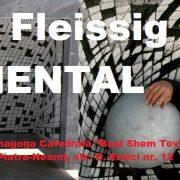 Piatra Neamţ: Monumental Foto cu NICOLAE FLEISSIG (Franța) la Catedrala Sinagogă