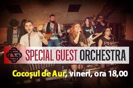 După degustarea vinurilor Cricova, Special Guest Orchestra cântă la Cocoşul de Aur!