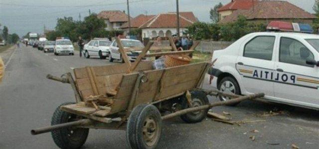 Căruţaş beat, pericol mortal pe drumul Piatra Neamţ-Bacău