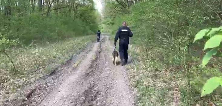 Neamţ: bărbat găsit cu trei câini de urmărire