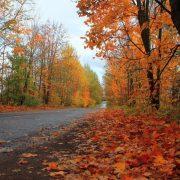 Frig și ploi până  la început de octombrie