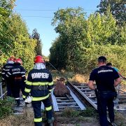 Bovină salvată de pompieri de pe calea ferată